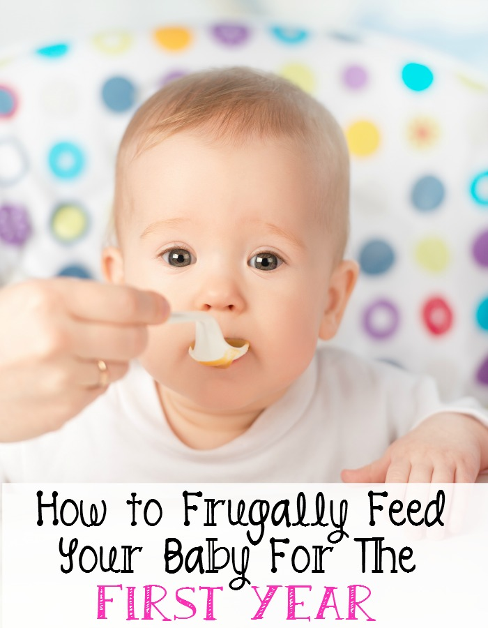 how to frugally feed your baby for the first year