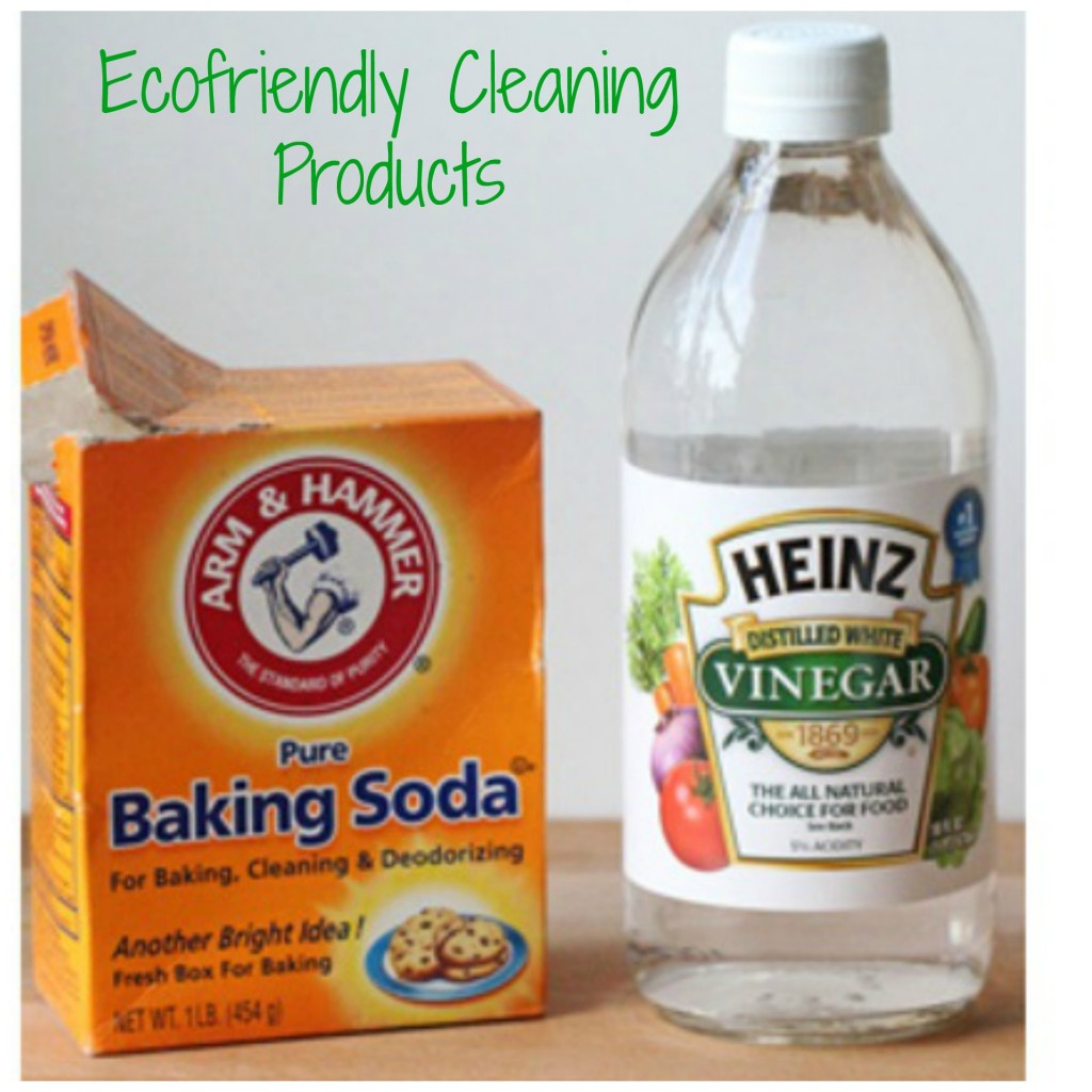 ecofriendlycleaning